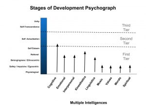 Psychograph of human intelligence in relationship to the stage of development